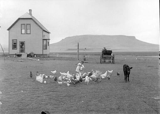 Siedler in den USA (1910)