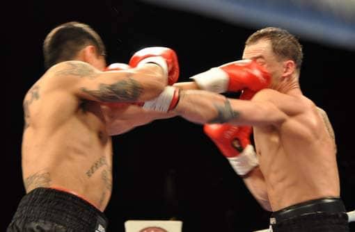 Boxer, die ihren Aggressionen freien Lauf lassen