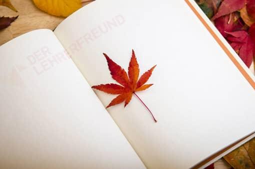 Buch mit Ahornblatt