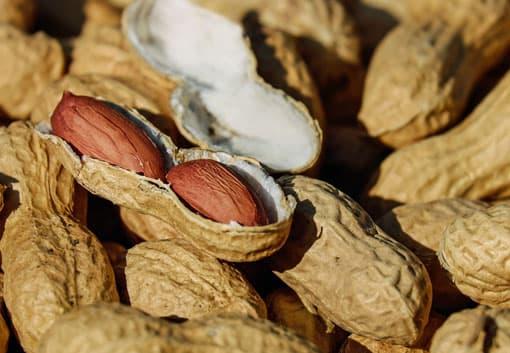 Erdnuss als Beispiel für innen und außen