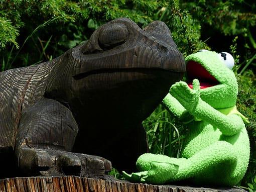 Kermit kommuniziert
