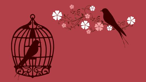 Vogel im Käfig